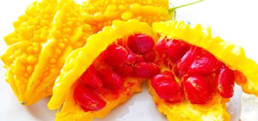 зрелый плод момордики, красивый и сочный